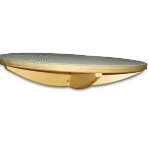 Balansir-disk-s-shipami