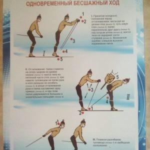 Lyzhi-odnovremennyj-besshazhnyj-hod