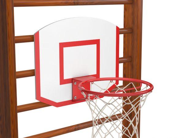 SHHit-basketbolnyj-navesno-mini-na-shvedskuyu-stenu-Polsha