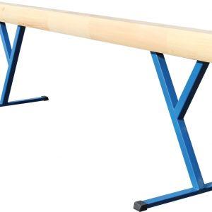Brevno-gimnasticheskoe-napolnoe-postoyannoj-vysoty